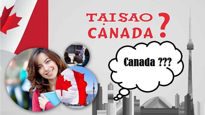 Sinh viên quốc tế định cư tại Canada sau khi đi du học