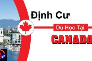 Top 8 ngành học dễ định cư tại Canada