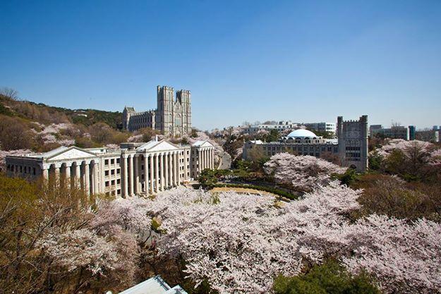Đại học Kyung Hee – ngôi trường VIP khi du học Hàn Quốc